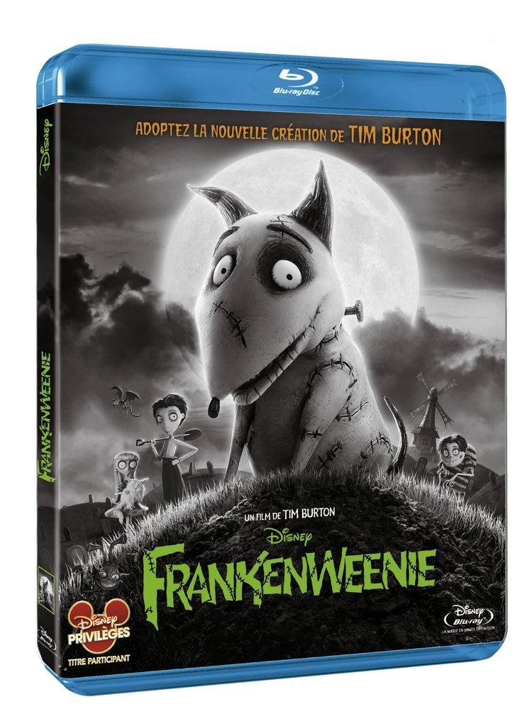 """anne frankenweenie Mellor, anne k 2003 """"'making a monster': an introduction to frankenstein"""" in the cambridge companion to mary shelley, edited by esther schor, 9-25 cambridge: cambridge university press napier, susan j 2000."""